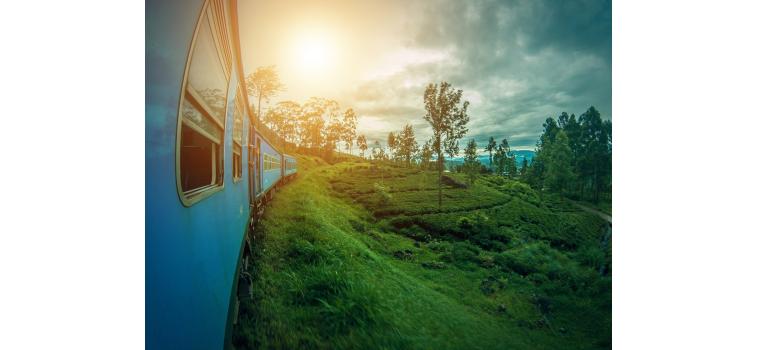 Le Voyage au Sri Lanka